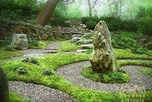 Garden Inspiration / by Valerianna Claff