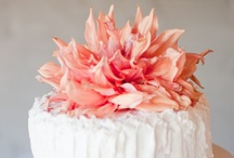 A Colorful Affair: Coral / by Dogwood Events