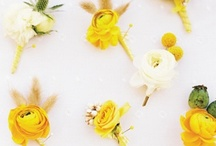 A Colorful Affair: Yellow / by Dogwood Events