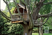 Treehouse Ideas / by Chuck Thier