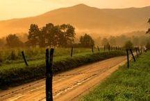 Roads / Beautiful roads around the globe. / by Patrick Jobst