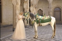 Mila's Wedding and Coronation / Mila's Wedding to King Caspian and her Coronation / by Katherine Chamberlain