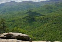 Asheville, North Carolina / Soon to be moving there :) / by Erin Bottenberg