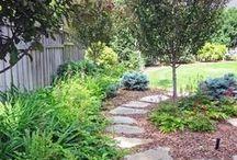 Garden ideas  / by Olivia Frary