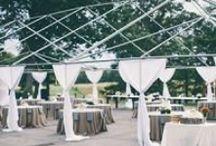 Wedding Planning  / by Charlotte Wedding