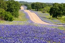 Hill Country Getaways / Nestled at the bottom of the Hill Country, San Antonio is close to great state parks, BBQ joints and camping grounds.  / by Visit San Antonio