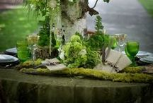 Tablescaping / by Gail Reid