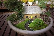 Fairy Gardens / by Joyce Ketner