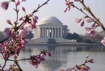 Washington D.C. / by Maggie Kelley