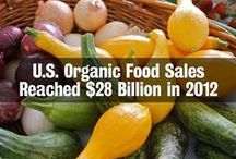 Food Crisis / Our current, commercial system of food production is not sustainable. Here's thoughts on the subject.  Post up to 5 pins per day. To join this board follow http://www.pinterest.com/UntrainedHW and then email angela@untrainedhousewife.com to request membership. / by Untrained Housewife