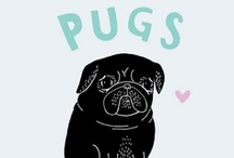 PUGs / Invite More People To Pin..... / by Robyn !