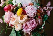 natural {blooms} / by jenna jolls {caffeine & confetti}