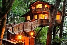 "Treehouses and Cabins / ""There is a place in which I can find. ME, me alone and free. Free from anything and everything. A place of ultimate. Safety through that window I see..."" by Alex / by Arcadia Floral & Home Decor - Houston TX"