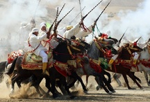 Tissa Horse Festival 2011 / by The View From Fez