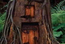 houses / by Lynn Johanson