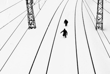 Still images that make you forget where you are / by Eric Whiting