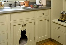 Pet Spaces / Kitchen Sales, Inc Knoxville can provide cabinetry, materials, shelving, sinks, faucets and tile for your custom pet spaces.  Let our designers help  / by Kitchen Sales, Inc