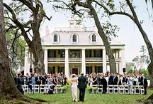 Wedding Ideas (for my future career. Wedding Planner) / by Ashlan Correia
