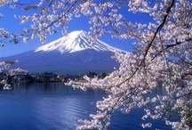 Fuji-San / The most beautiful & sacred mountian in Japan.