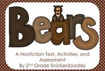 Black Bears,Brown Bears,and grizzly / by bila bee bacon