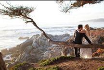 Weddings  / by La Playa Carmel