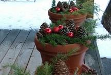 Christmas / by Brandi @The Creative Princess