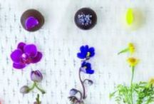 Spring & Easter / by Vosges Haut-Chocolat