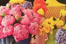 Flowers/Tablescapes / by Julia Berk