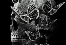 skulls / by Jamie Akers - Cove Side Creations