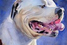 Animal Art / by Adopt-a-Pet.com