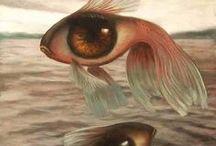 drak - fish - nice  / by bad angle