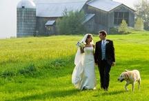 ❤| Vermont | Jevel Wedding Planning |❤ / by Jevel Wedding Planning | Jennifer E Wilson
