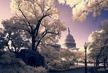 Washington DC / by Isabel Carrero