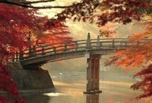 Autumn Around The Globe / by Gadling