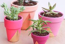 DIY - Home & Garden Accessories / by Dorothee-Maria Lotufo