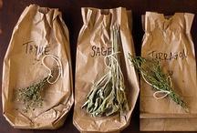 Herbs / by PA Garden Expo