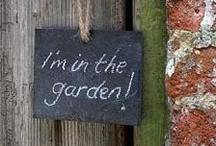 Tips&Tricks / by PA Garden Expo