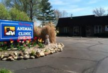 Portage Animal Clinic / This is our sister clinic located in Brimfield. We have evening and weekend hours. Also there is some surgery available. We offer the same friendly staff and doctors as the Stow Kent Animal hospital with the same friendly and compassionate atmosphere.  / by Stow Kent Animal Hospital