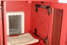 Dog Rooms / Fun ideas to create a room for your furry best friend.  / by Stow Kent Animal Hospital