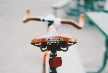bicycles / by marion p