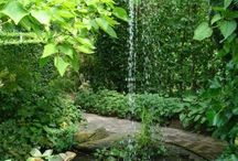 Water Gardens / by Kristy Stith