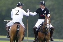 Polo players & ponies / by Kristy Stith