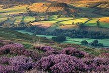 Beautiful Yorkshire / by Lynne Gittens