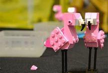 Animals: Flock of Flamingos / by Sarah Davis