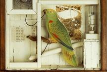 Diorama / by Sarah Beaglehole
