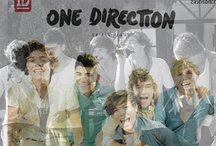 !!!!One Direction!!!! / by Lisa S