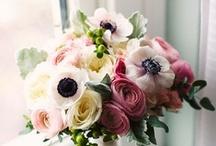 flores / by Itzia Portillo