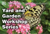 Programs and Events at the Library / by Miami-Dade Public Library System