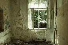 Windows / by Diane Givogue
