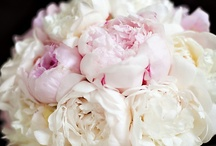 """Weddings / """"You wear white and I'll wear out the words I love you and you're beautiful""""  / by Melissa Powers"""